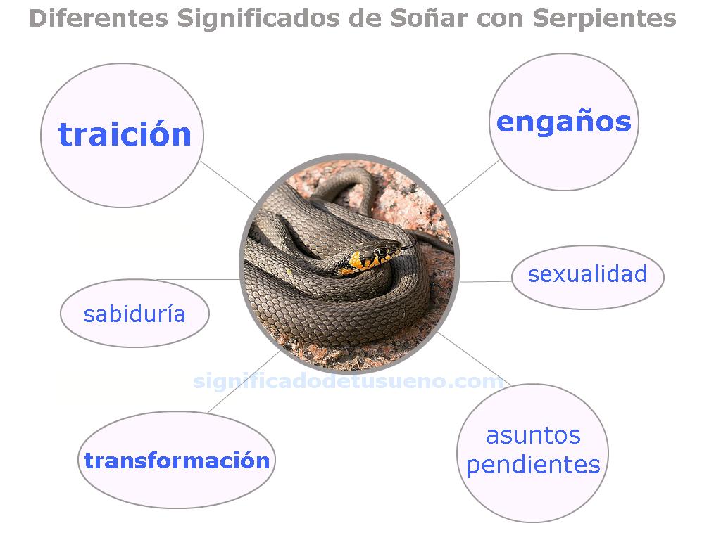 que significa sonar con serpiente, que significa sonar con culebra